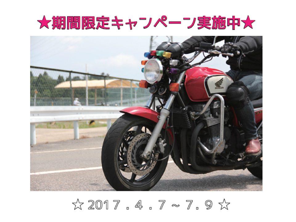 new_17異種